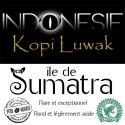 Kopi Luwak Sumatra 500g - Café d' Indonésie